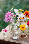 Flowers in the bottles — Stock Photo