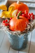 Herfst decoratie — Stockfoto