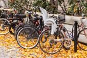 在斯德哥尔摩的自行车 — 图库照片