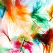 Colorful feathers — Stock Photo #54798915