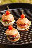 Savoureux hamburgers — Photo