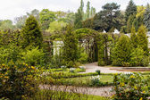Jarní zahrada — Stock fotografie