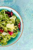 Zelený salát — Stock fotografie
