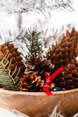 Vánoční dekorace s kužely — Stock fotografie
