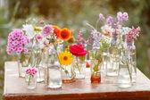 Flowers in the bottles still life — Stockfoto