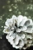 Decorative  silver cone — Stockfoto