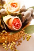 Nice pink flowers — Stock Photo
