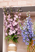Spring flowers in pot — Stock Photo