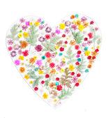 Floral heart shape — Stock Photo