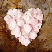 Heart from flower petals — Stock Photo