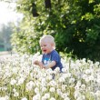 Boy sitting on a meadow — Stock Photo #61513591