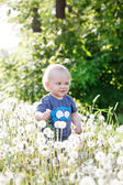 Boy sitting on a meadow — Stock Photo