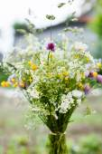 Bouquet of  wildflowers — Stock Photo
