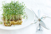 Fresh green watercress — Stock Photo