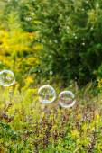 Soap bubbles outdoor — Stock Photo