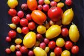Colorful fresh tomatoes — Stock Photo