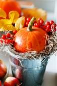 Pumpkin and berryies autumn decoration — Stock Photo