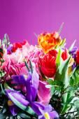 Bunter Blumenstrauß — Stockfoto