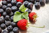Fresh berries closeup — Foto de Stock