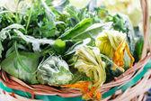Ripe vegetables in basket — Stock Photo