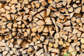 Dry firewood  stack — Stock Photo