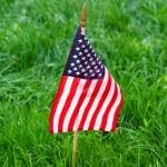 Americká vlajka na trávě — Stock fotografie #75398329