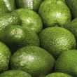 Many avocado — Stock Photo #69832533