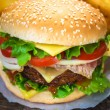 Burger and french fries — Stock Photo #57527597