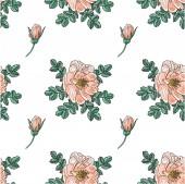 Briar rose sketch seamless pattern — Stock Vector