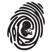 Finger print fetus — Stock Vector