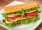 Tasty sandwich on the table — Stock Photo