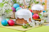 Easter cake, eggs, cherry blossoms — Stock Photo