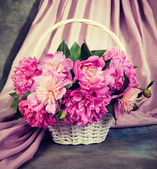 Peony flowers in basket. — Stock Photo