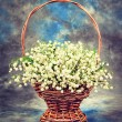 Lily of the valley in basket — Stock Photo #61821251