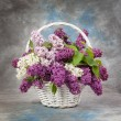 Lilac flowers in wicker basket — Stock Photo #66471071