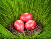 Easter concept. Eggs in a nest in the grass — Stock Photo