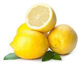 Fresh lemon isolated on white background — Stock Photo