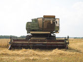 Harvester in work — Stock Photo