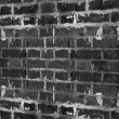 Grunge brick wall — Stock Photo #59844279