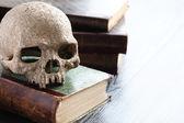 Skull On Books — Stock Photo