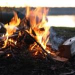Camp-Fire Near Lake — Stock Photo #76102651