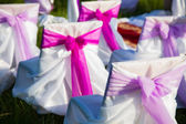 Chairs with festive purple bows — Stock Photo