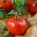 Tomato — Stock Photo #59371491