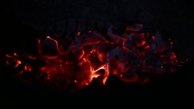 Burning charcoal in the dark — Stock Video