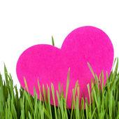 αγάπη κάρτα διακοσμημένα με καρδιά για την πράσινη χλόη — Φωτογραφία Αρχείου