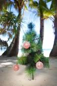 Christmas tree on beach — Stock Photo