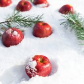 Mele rosse sulla neve bianca — Foto Stock