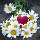 Hermosas margaritas frescas decoradas con corazones en textura de madera — Foto de Stock
