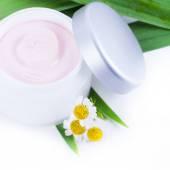 Organic skincare creams with camomile — Stock Photo