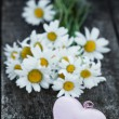 Beautiful fresh daisies decorated with hearts on wooden texture — Stock fotografie #67385495